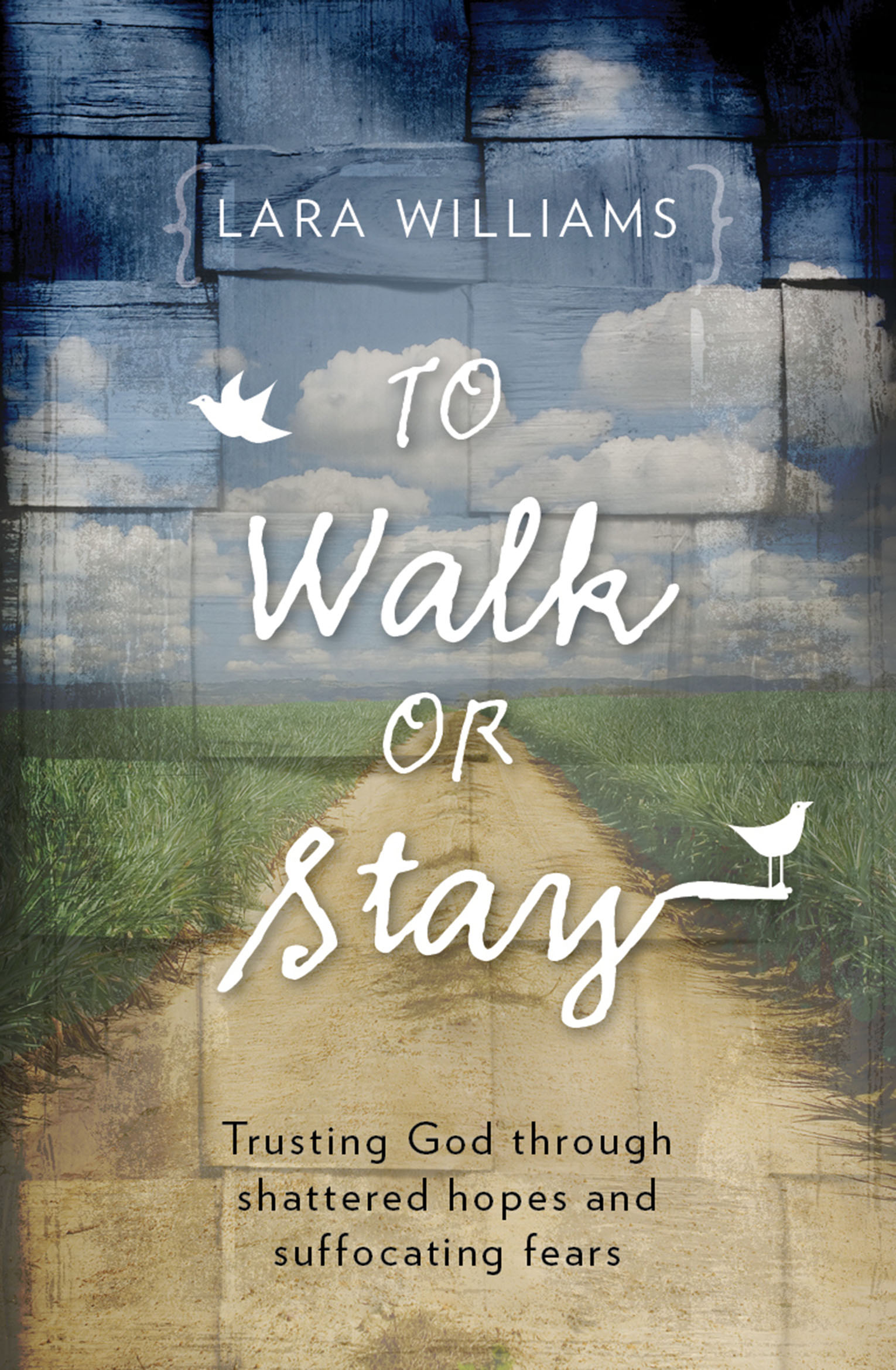 To Walk or Stay Cover
